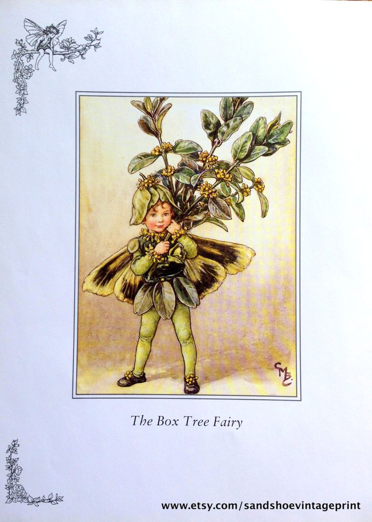 1930s BOX Tree FAIRY and PLANE Tree Fairy by sandshoevintageprint