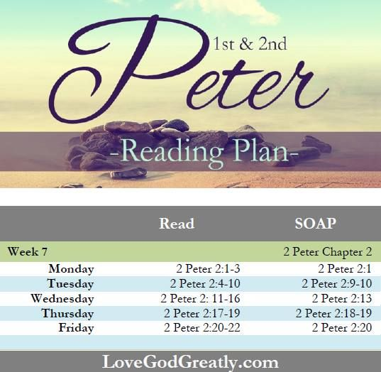 1st and 2nd peter The emmaus road – mile marker 3 – course 2 online ecourse units : 2 edition: ak '08 pages: 96 size: 55 x 85 isbn#: 978-1-59387-093-5.