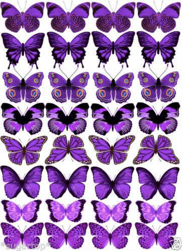 Edible Cups Purple Butterfly And Cup Cakes On Pinterest