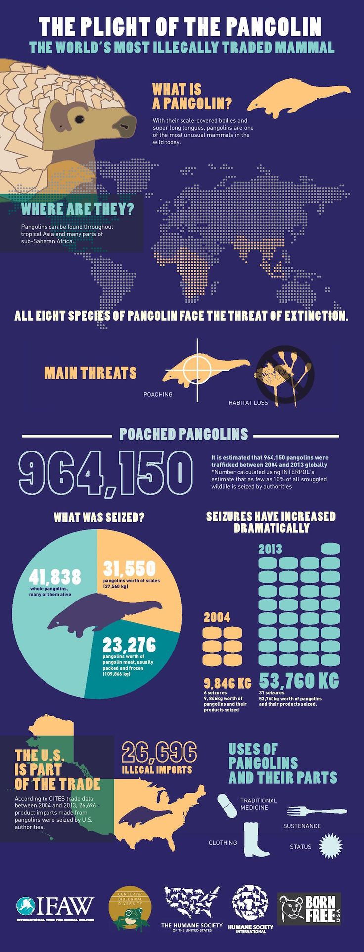 IFAW Infographic_Pangolin #This! Hashtags: #MajesticVision #endangered