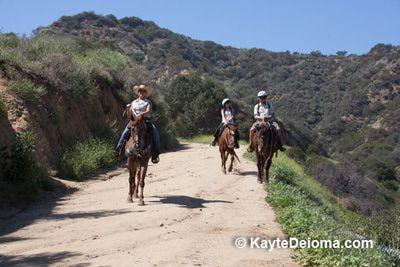Griffith Park Horseback Riding | Griffith Park