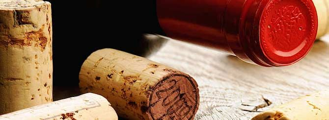 Wine investment and authentication expert Maureen Downey offers some tips on investing in wine. Read the latest wine news & features on wine-searcher