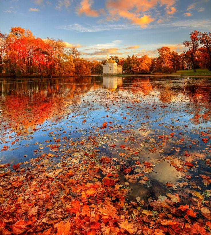 фотографии осеннего пейзажа напомним