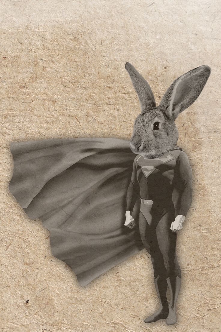 Super-bunny. Illustration by EM Miljeteig