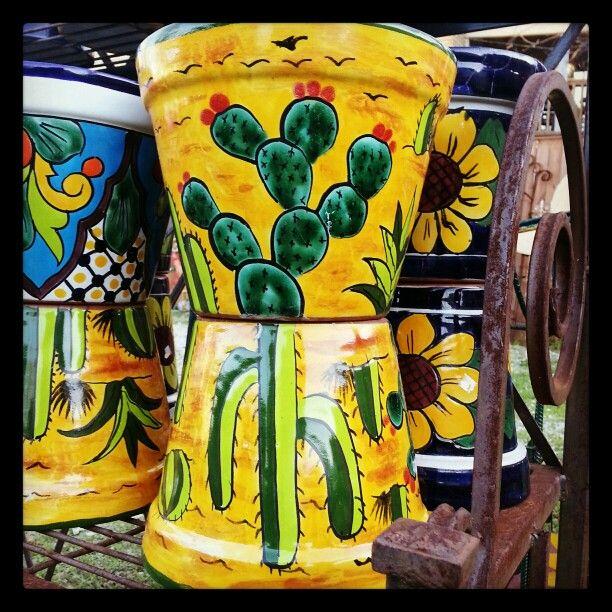 Cactus planter pots