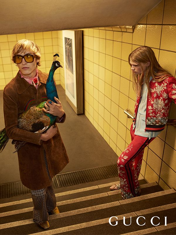 The men's Gucci Spring Summer 2016 collection by Alessandro Michele, captured by Glen Luchford in the new campaign. Model Tim Dibble in a suede coat, a mélange muslin shirt and cotton twill mouliné check flare pants and square frame sunglasses with yellow lenses. Model Jacob Hugo Goldhoorn wears red jersey jacket and pants with gold flower embroidery and Web and rubber soled leather sandals.