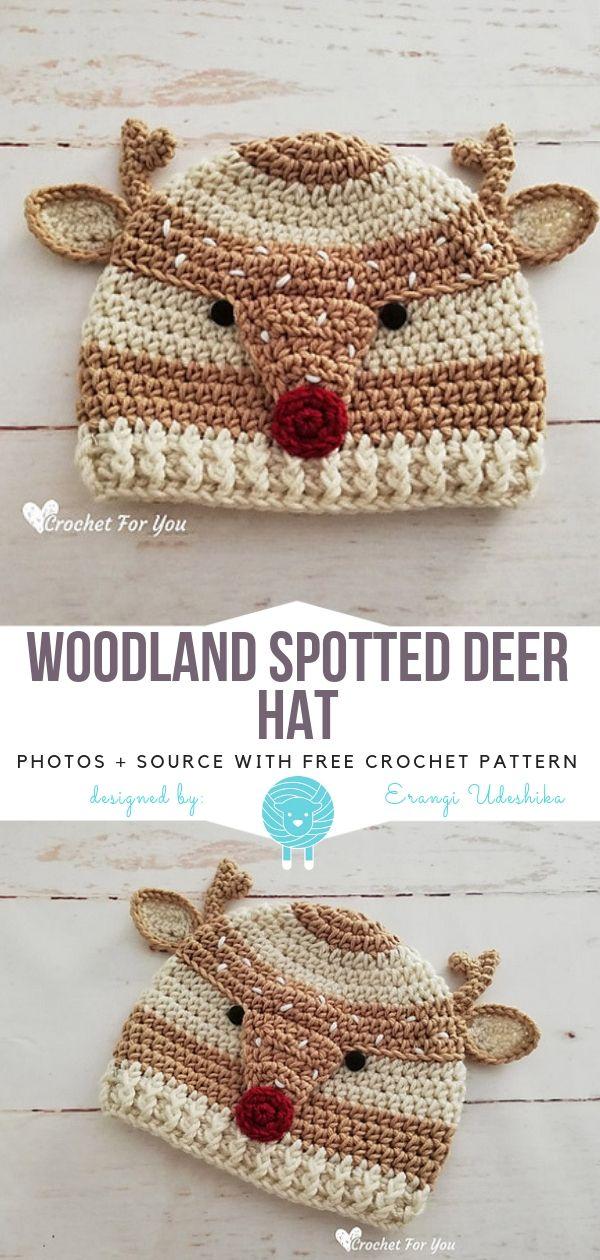 Funny Animal Hats Free Crochet Patterns Crochet Hats Crochet Hat Pattern Crochet