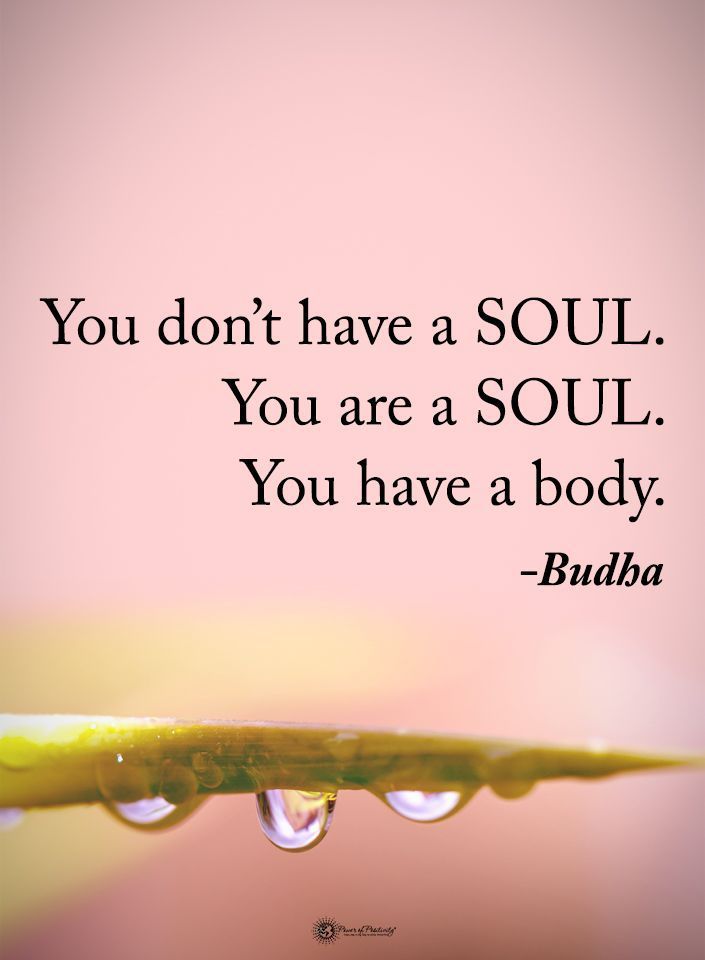 You don't have a SOUL. You are a SOUL. You have a body. - Buddha #powerofpositivity #positivewords #positivethinking #inspirationalquote #motivationalquotes #quotes #life #love #hope #faith #respect #soul #body #mind