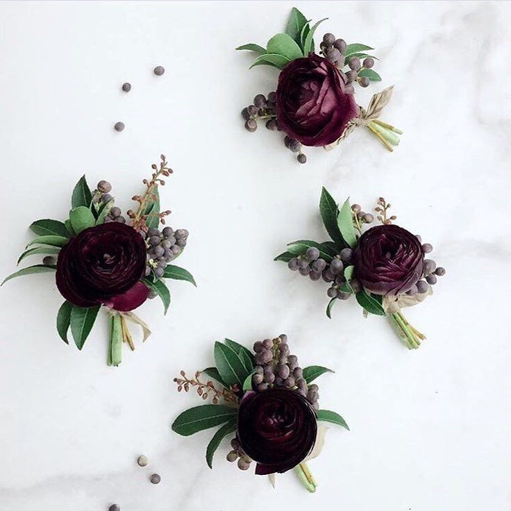 Dark cranberry ranunculus with hints of lavender and camellia foliage wrapped in a band of ivory ribbon with the stems showing
