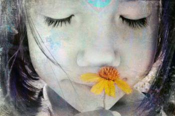 Fazendo da felicidade um hábito  E se a felicidade fosse um hábito que pudéssemos ensinar às crianças? E é! Qualidades que nos afastam da felicidade (fortes emoções negativas) e as qualidades que nos conduzem à felicidade (ações éticas) são enraizadas nos hábitos desenvolvidos no passado. A Atenção Plena ajuda as crianças e os adolescentes a reconhecerem os hábitos que levam à felicidade e a abandonarem os que não levam.  http://www.nowmaste.com.br/03/09/fazendo-da-felicidade-um-habito/