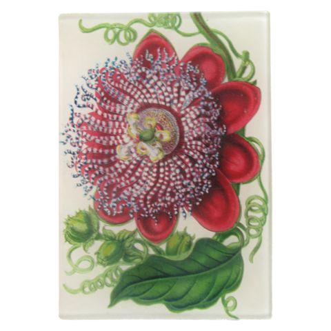 John Derian Company Inc — Passiflora
