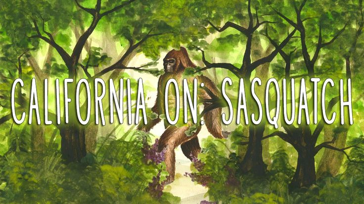 California On Sasquatch: A Not Finding Bigfoot Special