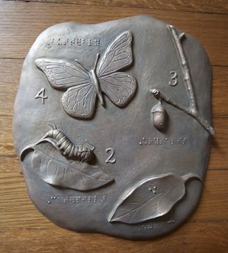 Monarch butterfly metamorphosis bronze tactile cast to be placed on an interpretive sign about butterflies- braille was added for accessibility ~Sea Center Texas