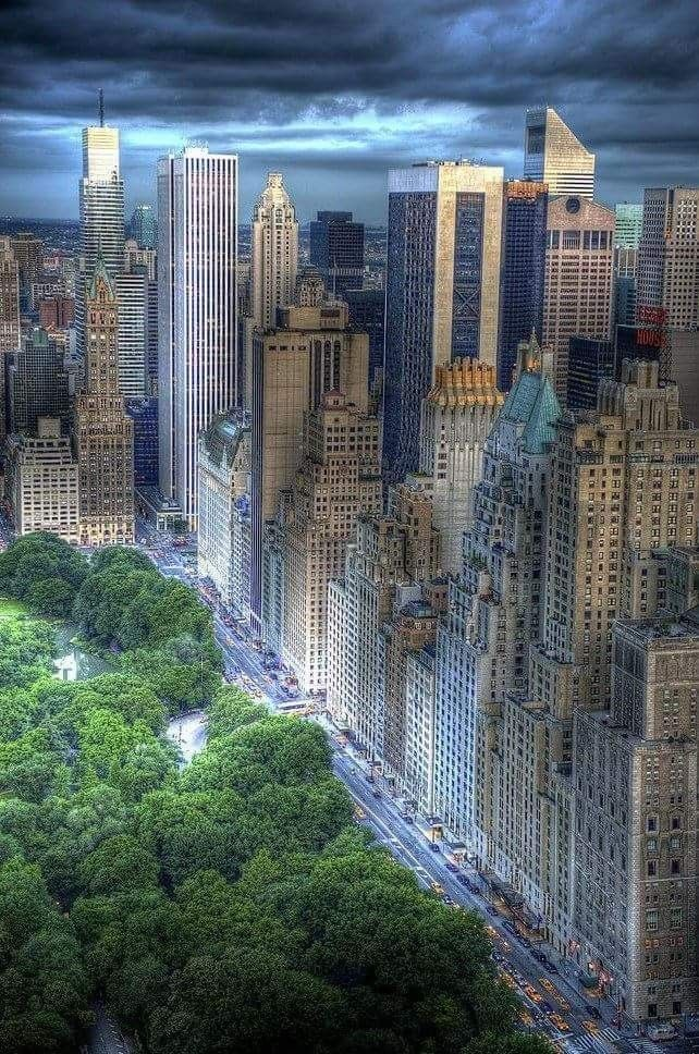 5th Avenue Central Park With Images New York New York City City