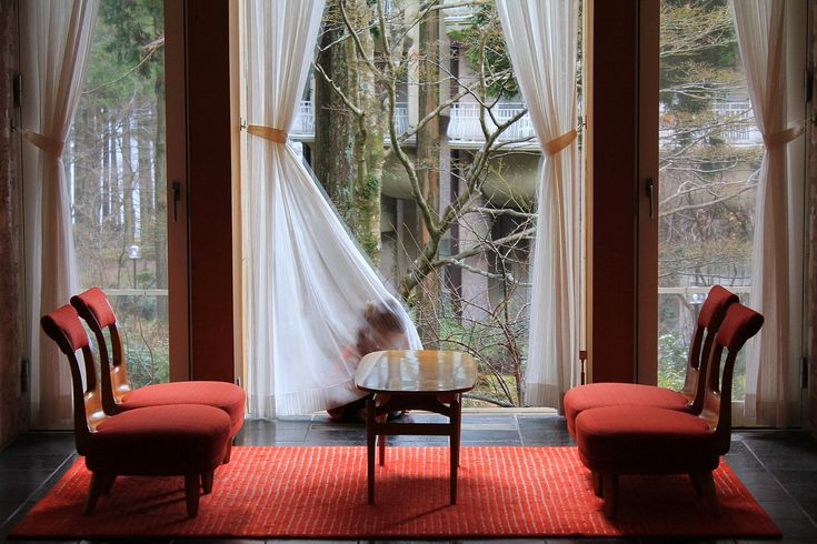 All sizes | hide‐and‐seek / at. hakone, kanagawa prefecture | Flickr - Photo Sharing!