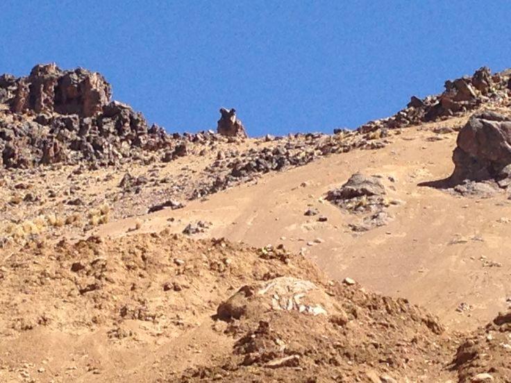 La roca del Búho, se encuentra en el cerro Caballuni, entre los distritos de Laraqueri y San Antonio de Esquilache, región Puno a 5,000 metros sobre el nivel del mar.