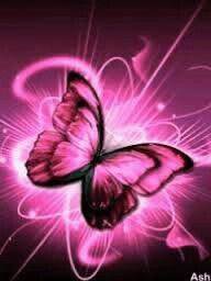 Shining pink butterfly   Butterfly wallpaper, Butterfly ...