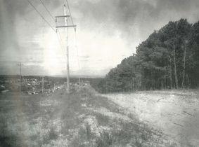Como Pine Plantation 1966.