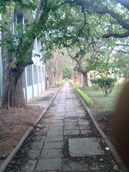 File:Tata Institute or I.I.Sc..jpg