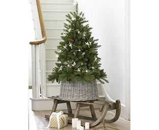 Original Gift Company Artificial Woodland Christmas Tree, 4ft Prince Albert started it all: the British tradition of decorating fir trees at Christmas time. In 1840 he married Victoria – well, strictly speaking she married him. Victoria was the queen, Albert a m http://www.MightGet.com/february-2017-2/original-gift-company-artificial-woodland-christmas-tree-4ft.asp