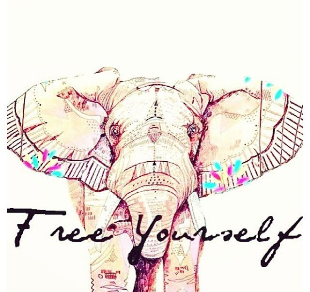 Free Love Quotes: Free Yourself Elephant Love
