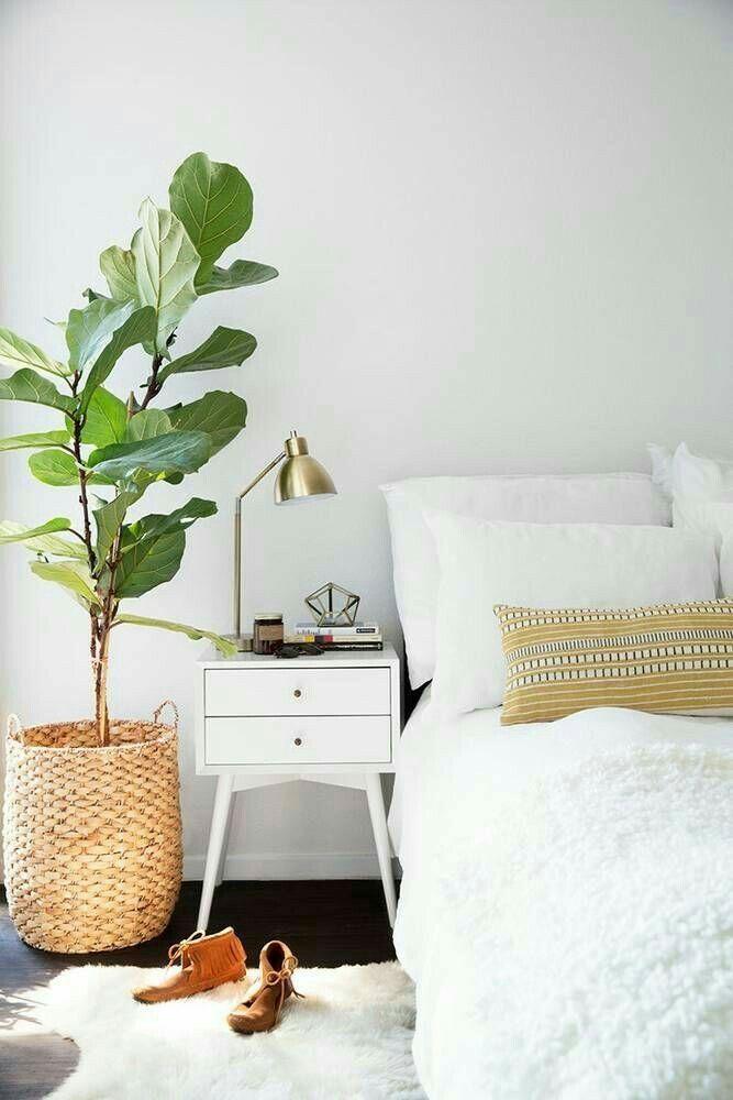 Feminine Minimalist Bedroom Pillows minimalist kitchen design