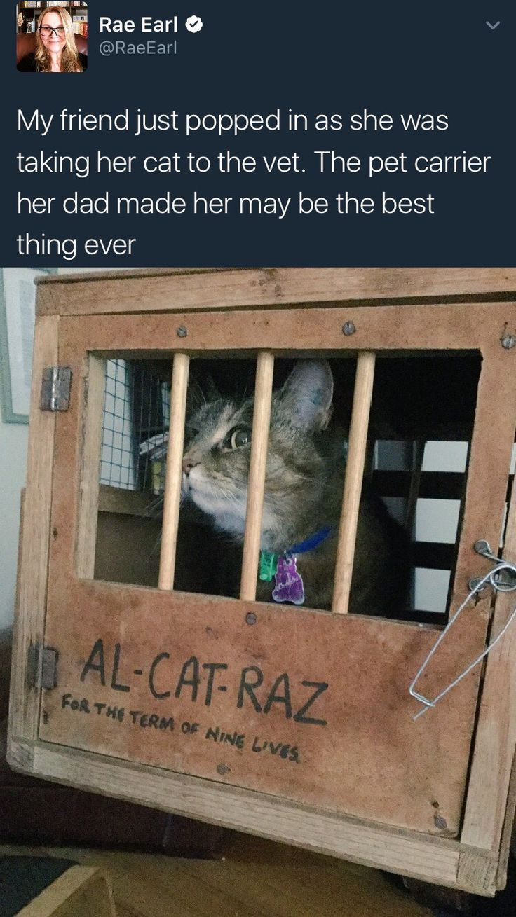 Al-Cat-Raz - You will wuv what's in here! I'll give you the best deals to make our pooch friends happy!