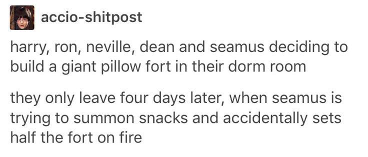 Harry Potter, Ron weasley, Neville longbottom, Dean Thomas, Seamus finnigan, hp, Hogwarts