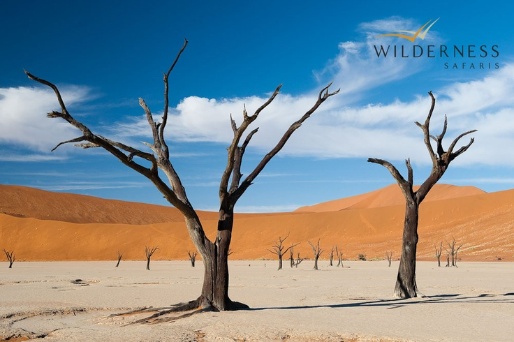 Little Kulala - The charismatic Dead Vlei, which has inspired the camp decor and construction. #Safari #Africa #Namibia #WildernessSafaris