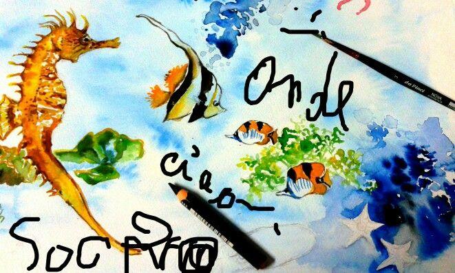 Sogno pesci