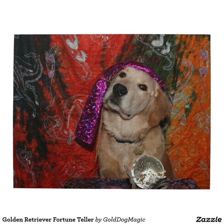 Golden Retriever Fortune Teller Jigsaw Puzzles