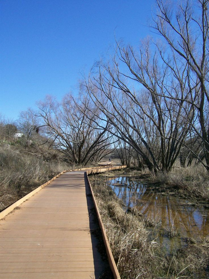 Aside from the dog park, McAllister Park is another good place to begin exploring the Salado Creek Greenway. It's 2.4 miles from McAllister Park to Lady Bird Johnson Park, or almost a 5-mile round trip.