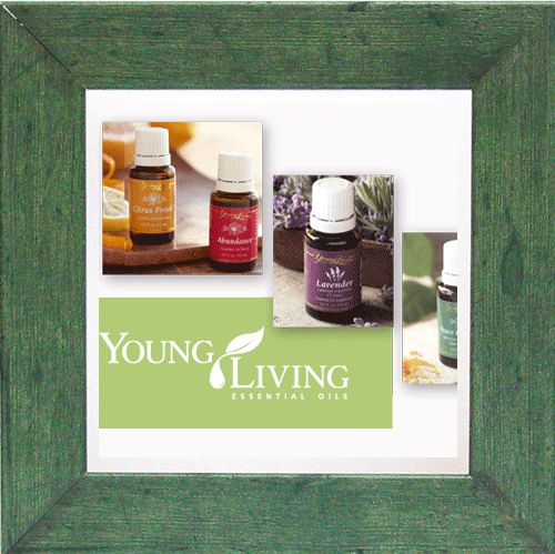 Mom's Essential Tookit Family Essential Pack | Aromatic | Topical | Dietary | Young Living Indie Distributor