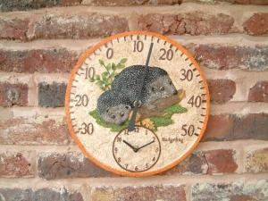Adorable - a clock with hedgehogs on! (and a thermometer too :D )