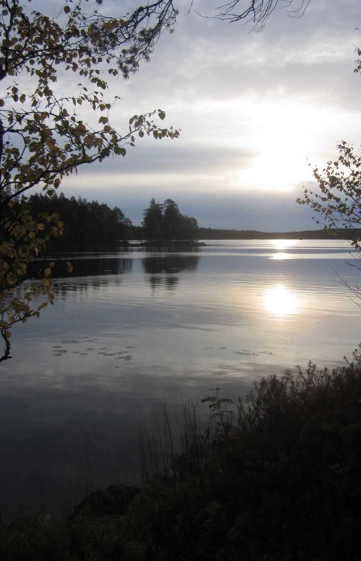 Morning sun in Salamajärvi National Park #salamajaervinationalpark #autumn #Kivijaervi #Centralfinland #sun