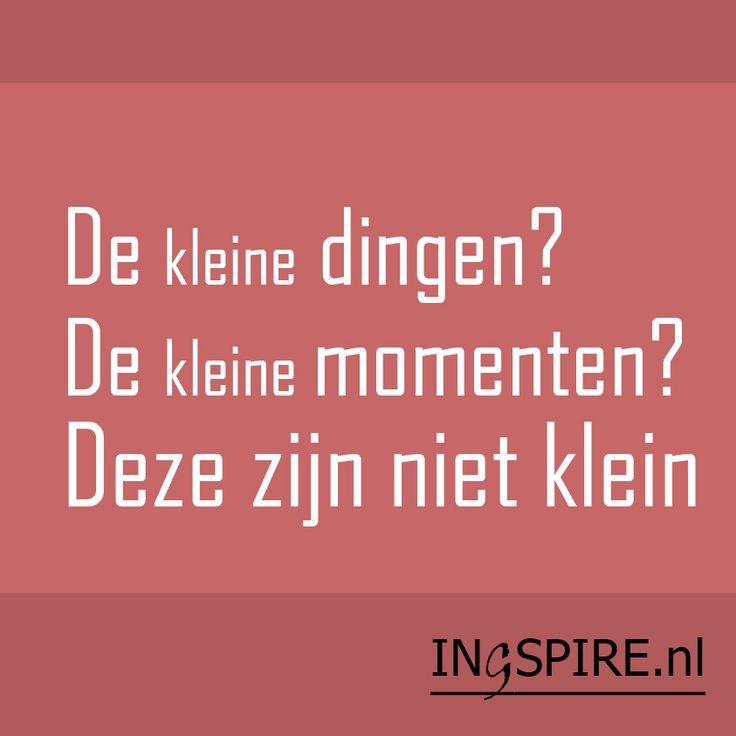 De kleine dingen? De kleine momenten? Citaat van inspirator Jon Kabat-Zinn | Ingspire.nl