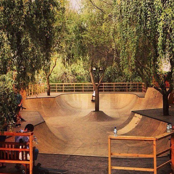 I'd let Scott build a skate park if it looked like this!