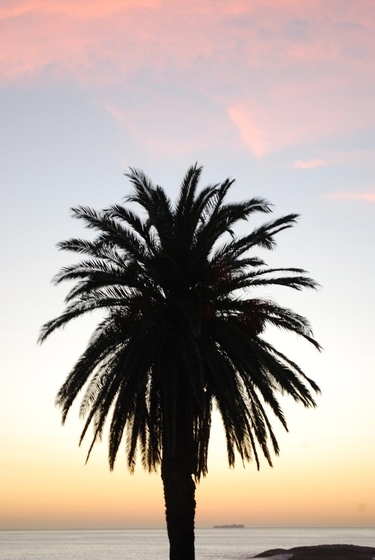 Clifton Beach,Cape Town