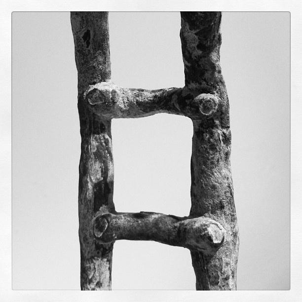 """Fotoscop del taller """"Mirades Singulars"""" a la Fundació Joan Miró"""