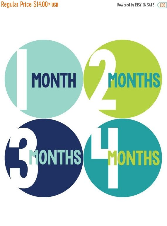 Monthly Baby Milestone Stickers Baby Boy Baby by MonthsinMotion