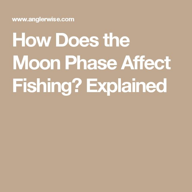 43 best fishing brands images on pinterest logo google for Moon phases and fishing