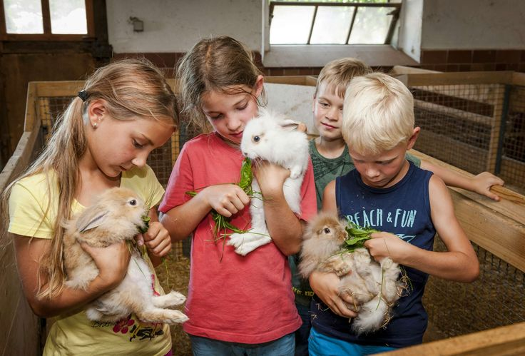 Tierfreunde Esterer Hof Urlaub auf dem Bauernhof Tiere Pony Ferienwohnung Chiemgau Chiemsee Bayern