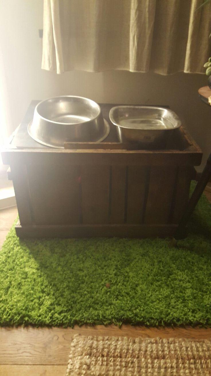 Ciotola rialzata per cani con contenitore cibo