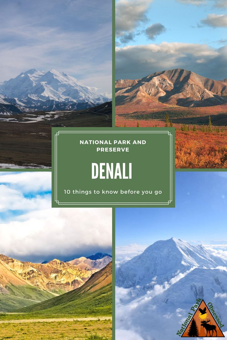 10 Things to Know Before Visiting Denali National Park and Preserve
