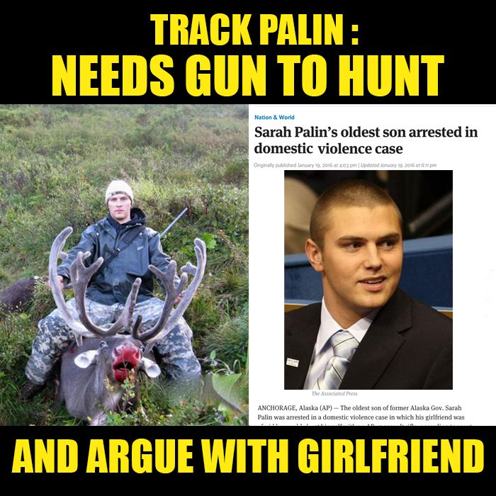 Image result for track palin gun