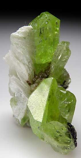 ✯ Calcite on Diopside :: From Merelani Hills . Lelatema Mountains . Arusha Region . Tanzania ✯