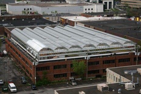 Et si on transformait le toit de votre immeuble en potager? - Rue89 - L'Obs