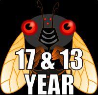 Must avoid the Periodical Cicadas! 17 & 13 Year Cicadas, Magicicada Broods & Brood Maps