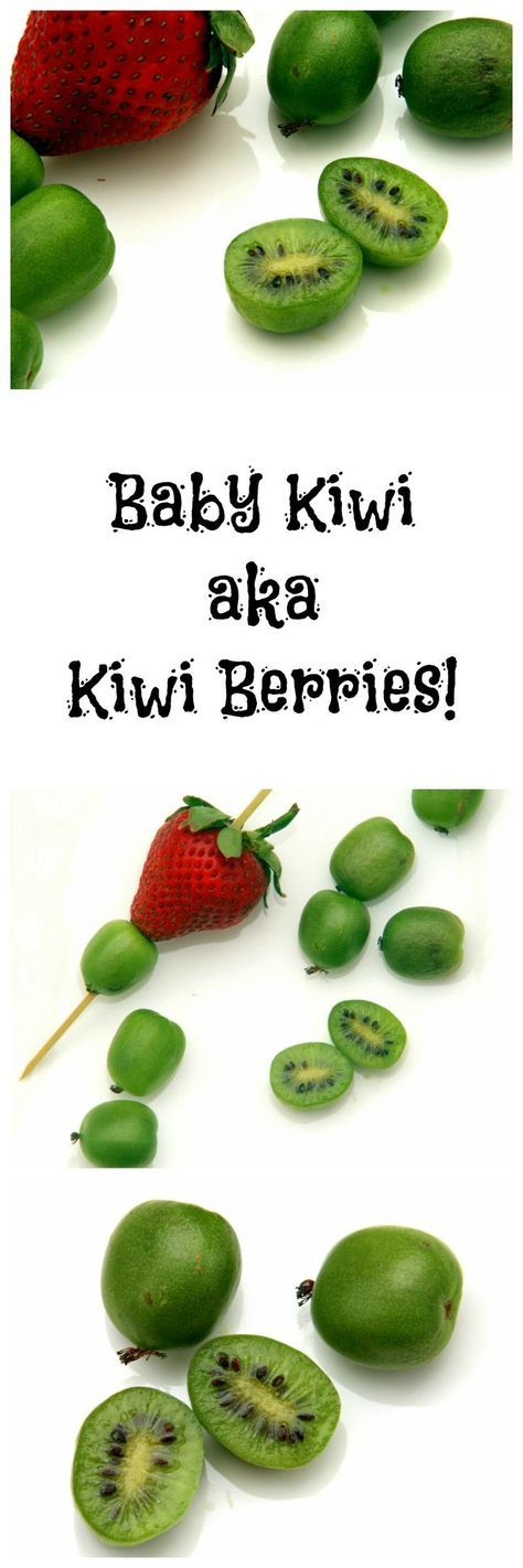 "Baby Kiwi Fruit, also known as Kiwi Berries, are the ""it"" fruit of the moment…"