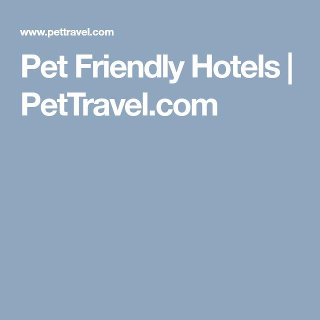 Pet Friendly Hotels   PetTravel.com